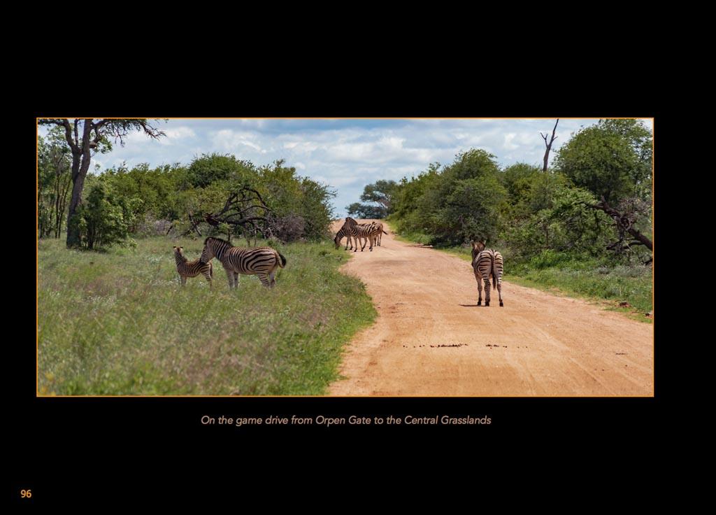 http://travelandpix.com/wp-content/uploads/2020/07/Makutsi-Page-099-1024px-Output.jpg