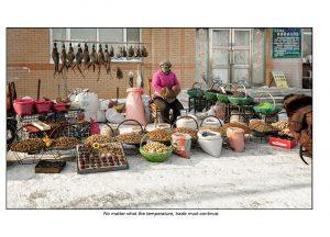 http://travelandpix.com/wp-content/uploads/2021/07/Harbin-Ice-and-Snow-Page-34-L-300x216.jpg