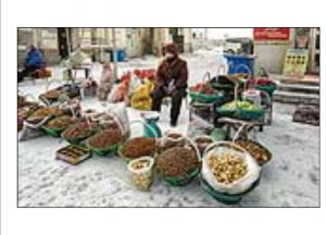 http://travelandpix.com/wp-content/uploads/2021/07/Harbin-Ice-and-Snow-Page-34-R-300x216.jpg
