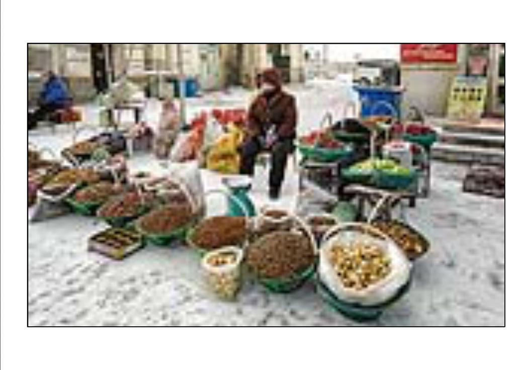http://travelandpix.com/wp-content/uploads/2021/07/Harbin-Ice-and-Snow-Page-34-R.jpg