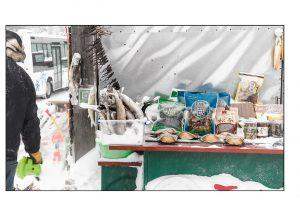 http://travelandpix.com/wp-content/uploads/2021/07/Harbin-Ice-and-Snow-Page-43-L-300x216.jpg