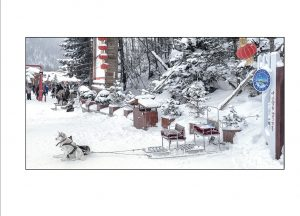 http://travelandpix.com/wp-content/uploads/2021/07/Harbin-Ice-and-Snow-Page-46-R-300x216.jpg