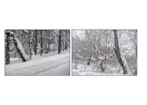 http://travelandpix.com/wp-content/uploads/2021/07/Harbin-Ice-and-Snow-Page-48-L-300x216.jpg