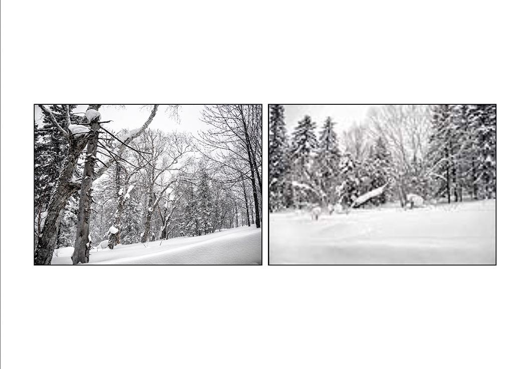 http://travelandpix.com/wp-content/uploads/2021/07/Harbin-Ice-and-Snow-Page-48-R.jpg