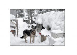 http://travelandpix.com/wp-content/uploads/2021/07/Harbin-Ice-and-Snow-Page-53-L-300x216.jpg