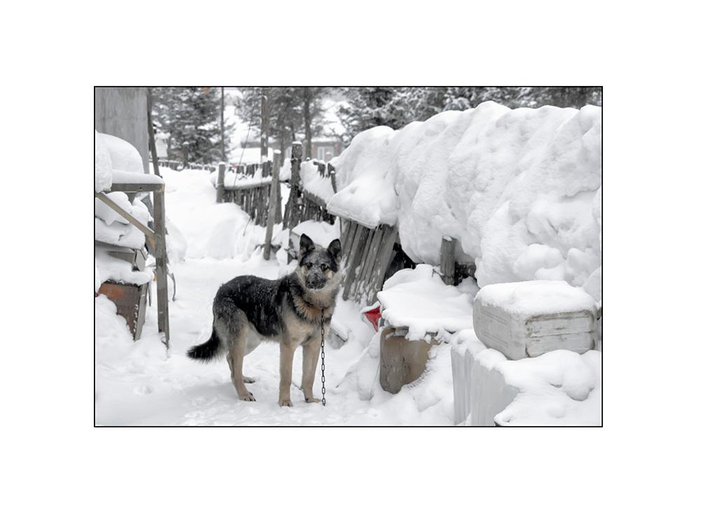 http://travelandpix.com/wp-content/uploads/2021/07/Harbin-Ice-and-Snow-Page-53-L.jpg