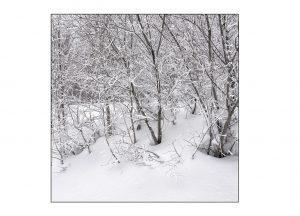 http://travelandpix.com/wp-content/uploads/2021/07/Harbin-Ice-and-Snow-Page-65-L-300x216.jpg