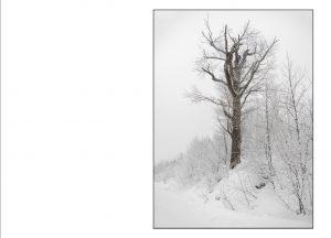 http://travelandpix.com/wp-content/uploads/2021/07/Harbin-Ice-and-Snow-Page-65-R-300x216.jpg