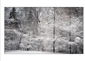 http://travelandpix.com/wp-content/uploads/2021/07/Harbin-Ice-and-Snow-Page-66-R-300x216.jpg