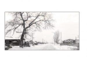 http://travelandpix.com/wp-content/uploads/2021/07/Harbin-Ice-and-Snow-Page-71-L-300x216.jpg