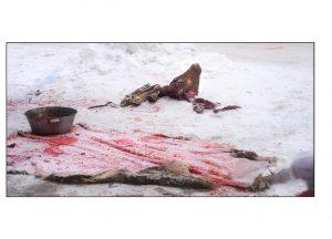 http://travelandpix.com/wp-content/uploads/2021/07/Harbin-Ice-and-Snow-Page-74-L-300x216.jpg