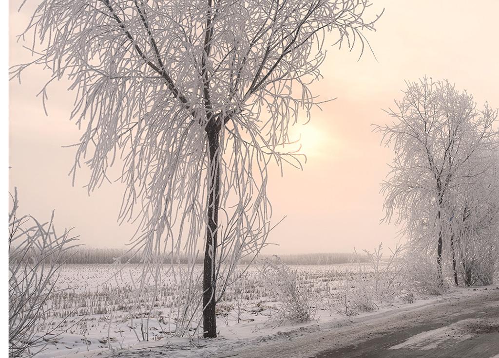 http://travelandpix.com/wp-content/uploads/2021/07/Harbin-Ice-and-Snow-Page-83-L.jpg