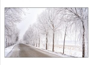 http://travelandpix.com/wp-content/uploads/2021/07/Harbin-Ice-and-Snow-Page-84-R-300x216.jpg
