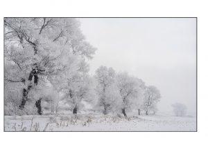 http://travelandpix.com/wp-content/uploads/2021/07/Harbin-Ice-and-Snow-Page-87-L-300x216.jpg