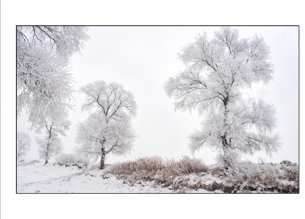http://travelandpix.com/wp-content/uploads/2021/07/Harbin-Ice-and-Snow-Page-87-R.jpg