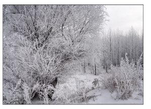 http://travelandpix.com/wp-content/uploads/2021/07/Harbin-Ice-and-Snow-Page-89-L-300x216.jpg