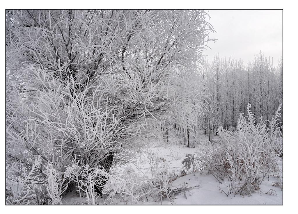 http://travelandpix.com/wp-content/uploads/2021/07/Harbin-Ice-and-Snow-Page-89-L.jpg