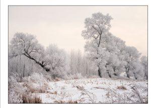 http://travelandpix.com/wp-content/uploads/2021/07/Harbin-Ice-and-Snow-Page-89-R-300x216.jpg