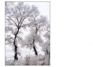 http://travelandpix.com/wp-content/uploads/2021/07/Harbin-Ice-and-Snow-Page-93-L-300x216.jpg
