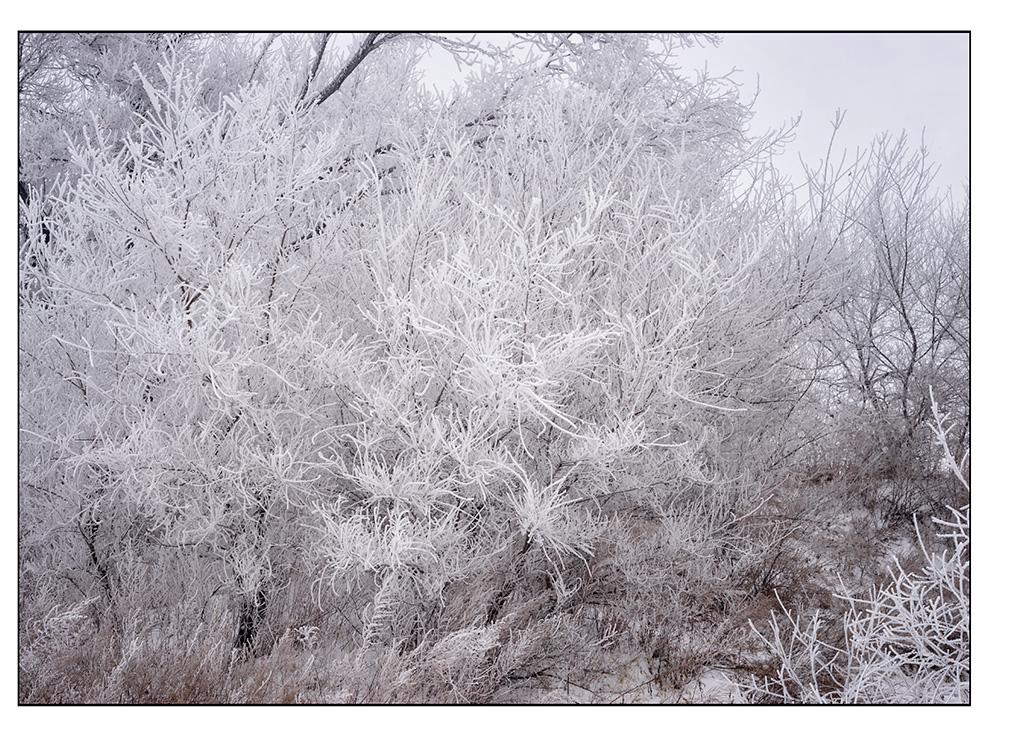 http://travelandpix.com/wp-content/uploads/2021/07/Harbin-Ice-and-Snow-Page-95-L.jpg