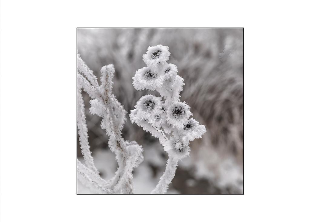 http://travelandpix.com/wp-content/uploads/2021/07/Harbin-Ice-and-Snow-Page-97-R.jpg