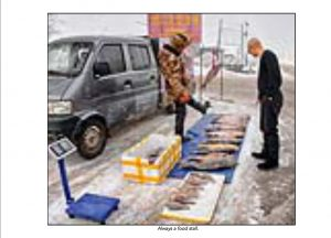 http://travelandpix.com/wp-content/uploads/2021/07/Harbin-Ice-and-Snow-Page-98-R-300x216.jpg