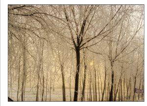 http://travelandpix.com/wp-content/uploads/2021/07/Harbin-Ice-and-Snow-Page-99-R-300x216.jpg