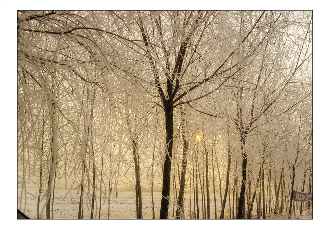 http://travelandpix.com/wp-content/uploads/2021/07/Harbin-Ice-and-Snow-Page-99-R.jpg
