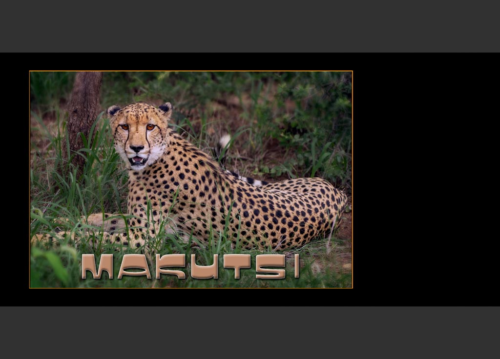 https://travelandpix.com/wp-content/uploads/2020/07/Makutsi-Page-002-1024px-Output.jpg